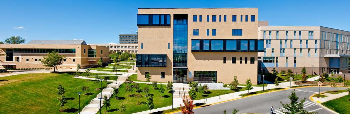 Department of Strategy, Entrepreneurship, & Venture Innovation